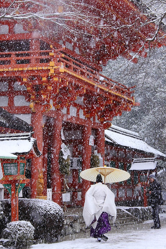 Wonderful Winter Wonderland-image by photographer U-92 San-click photo for more images!