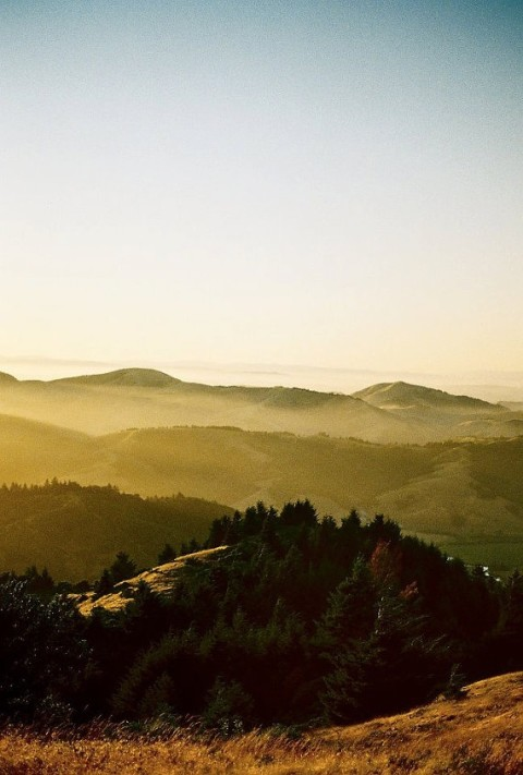 The Natural Beauty of Sonoma County