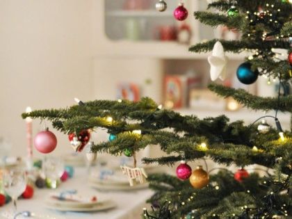 Where Did the Christmas Tree Tradition Come From?