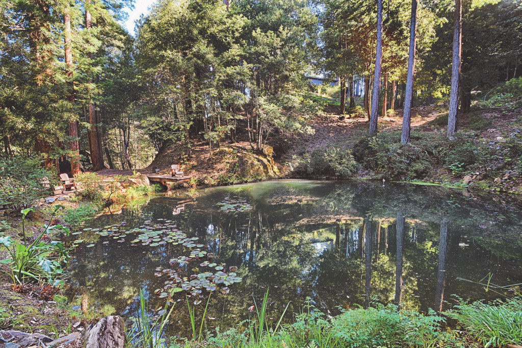 Rescue Koi Pond on this Luxurious Occidental Estate For Sale-Sonoma Style™