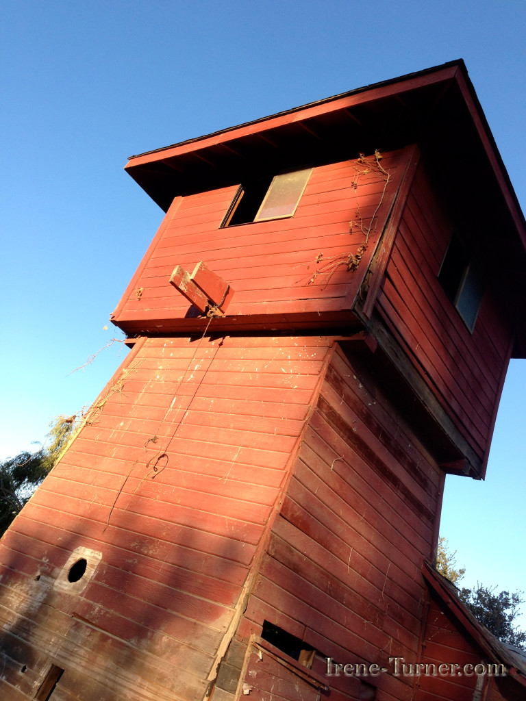 Sonoma County Water Towers-image by Irene Turner