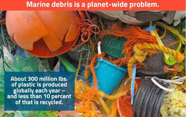 Save our Oceans by collecting debris and plastic from our shores-via Washed Ashore Organization