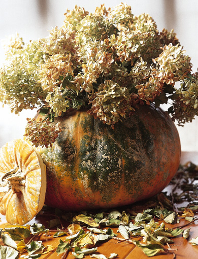 better homes gardens 7 Ways to Add Fall Decor Naturally