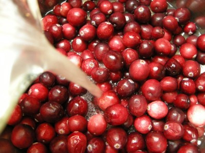 cranberry stuff 007 400x300 Cranberry Relish for Thanksgiving!