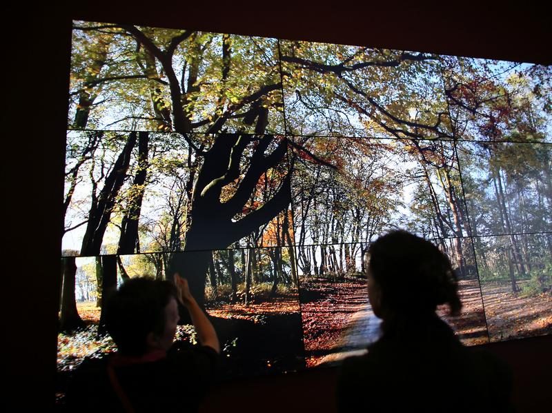 "In a room with large scale video art by David Hockney-image via German ""Bigger Exhibition"""